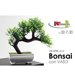 ANS/BONSAI 22*7*20 DH-348Gicos