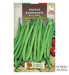 FAGIOLO RAMPICANTE BLUE LAKE MANGIATUTTO (SENZA FIOrganica