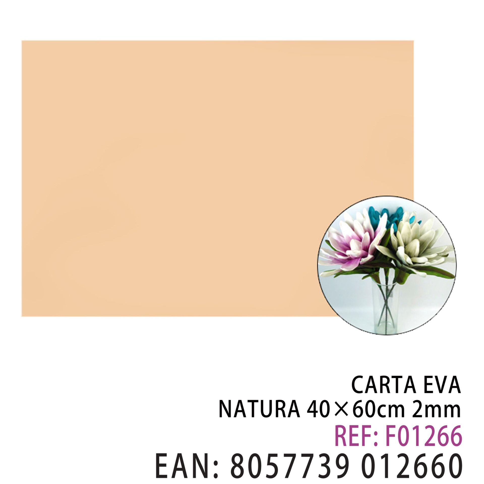 EVA NATURA 40 X 60 CMDz